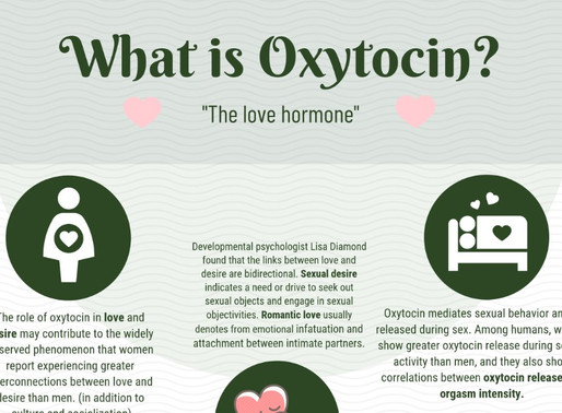 Infographic: Oxytocin – The Love Hormone