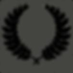 Laurel_wreath_victory_Olympus_winner_lux