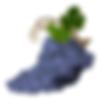 icône grappe de raisin