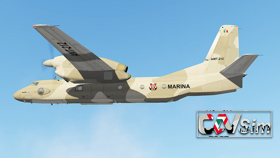 AN-32B AMT-212 19.jpg