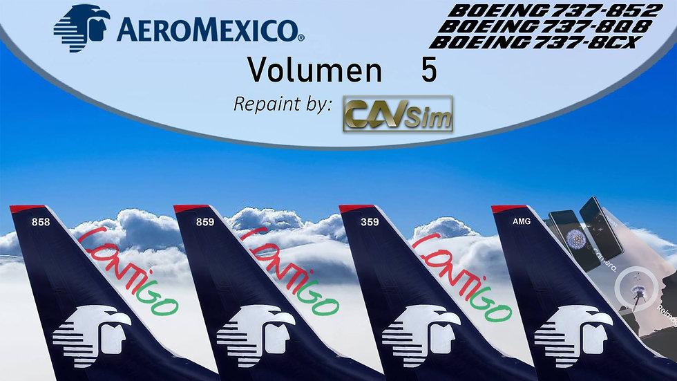 Pack Boeing No. 32 Aeromexico B737-800WL 'Special Liveries' Vol.5