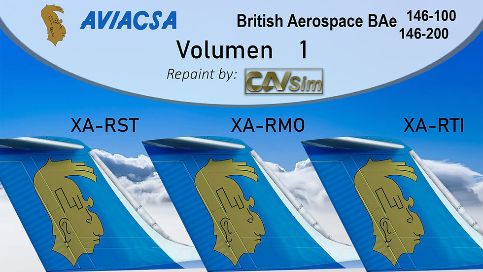 British Aerospace Pack No. 33 BAe 146 Aviacsa  QW