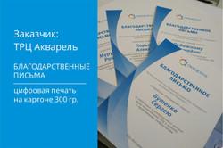 Макет_ дипломы