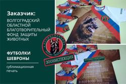 2020_08_29 дино_ блок новостей