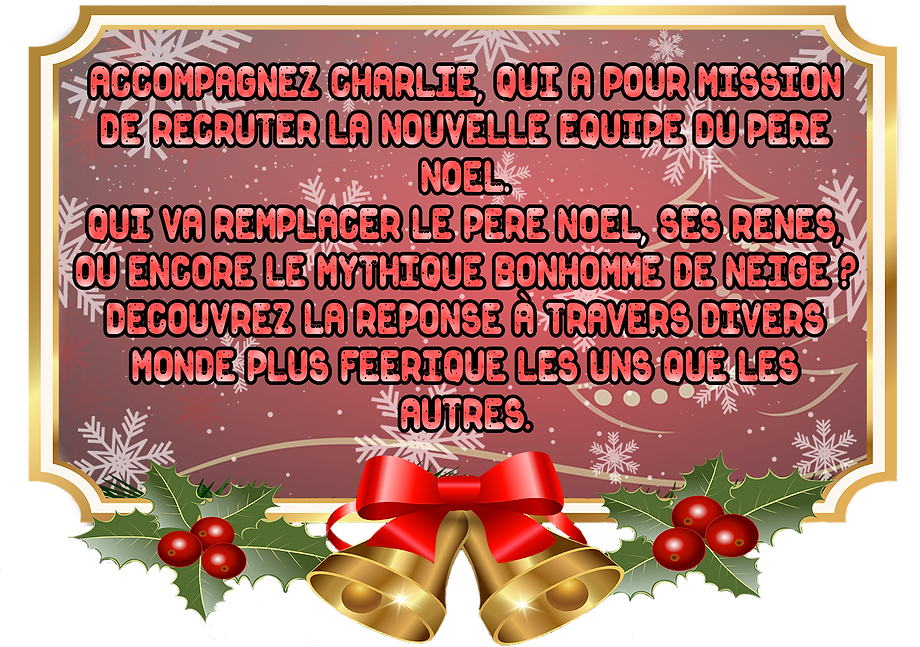 affiche resume spectacle noel png.png