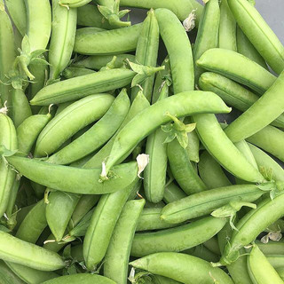 The first #peas are here and they're SO