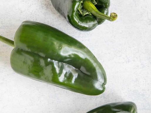 Week 14 - Poblano Peppers