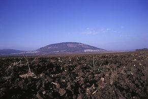 Mont Tabor.jpg