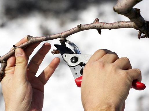 The 5 Best Home Improvement Projects to Do This Winter