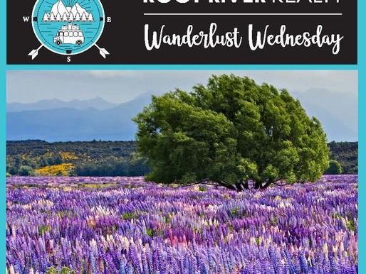 Wanderlust Wednesday: Fiordland National Park, New Zealand