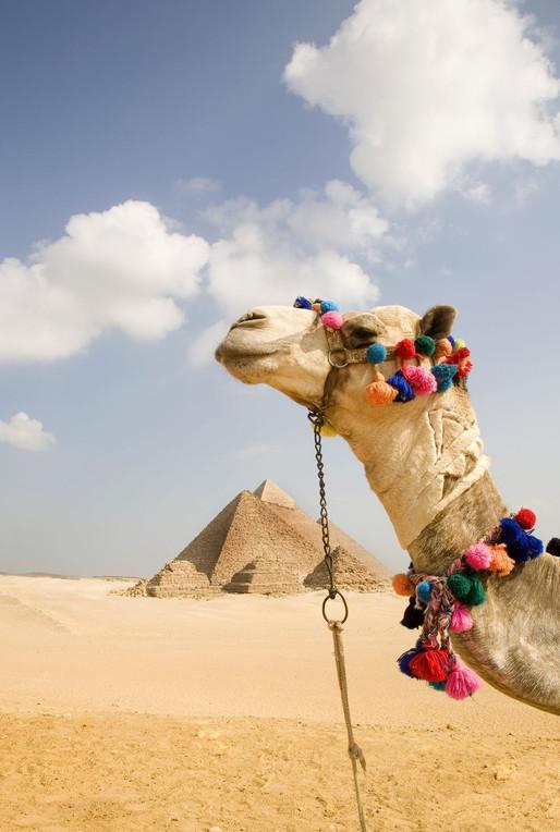 Wanderlust Wednesday: Giza, Egypt
