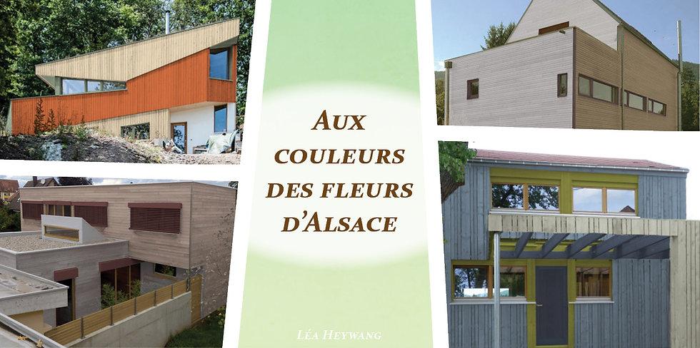 coloration de façade couleur maison ossature bois