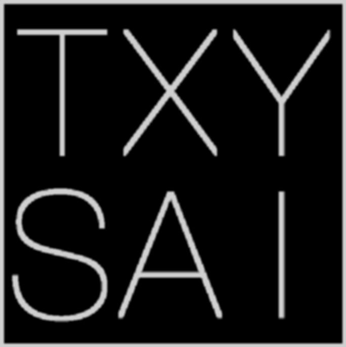 TXYSAI logo