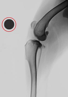 radiografie digitali 01.png