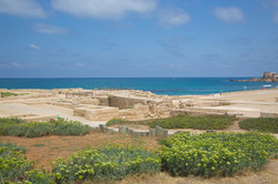 Haifa1.jpg