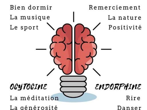 🌈 Les 4 hormones du Bonheur 😊
