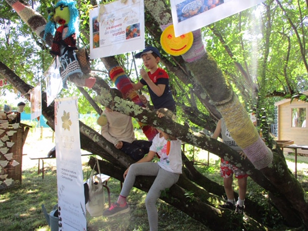 Sechage à l'arbre.JPG