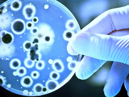 Superbugs in hospital pipes - Is anyone really safe?