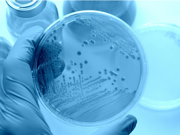 Super Germs: Are We Making Bacteria More Resistant?