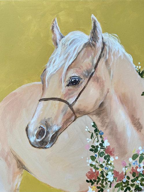 Apple Pie the Pony