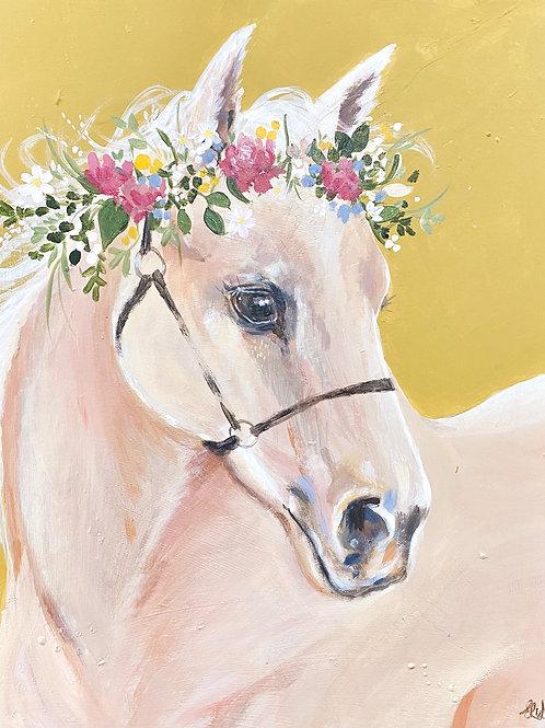 Shortcake the Pony