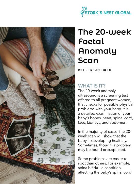 The 20 weeks Scan