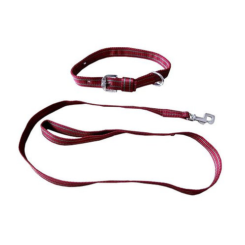 Kennel Nylon Collar with Lead Set for Medium to Large Dogs