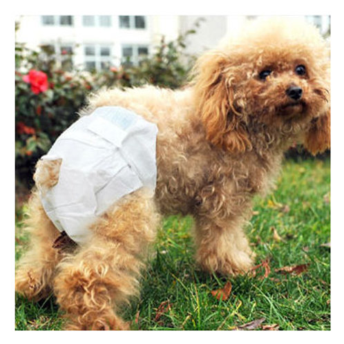 Dog Disposable Sanitary Diapers
