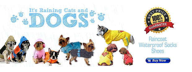 banner raincoat3.jpg