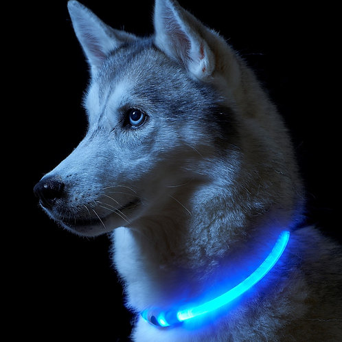 Bling LED Rechargeable Pet Safety Collar
