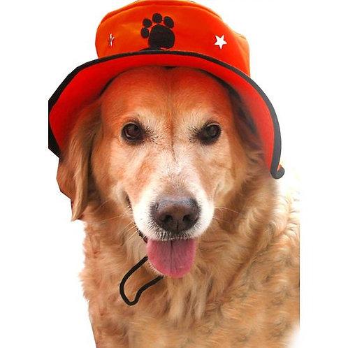 Zorba Designer Hat for Dogs & Cats