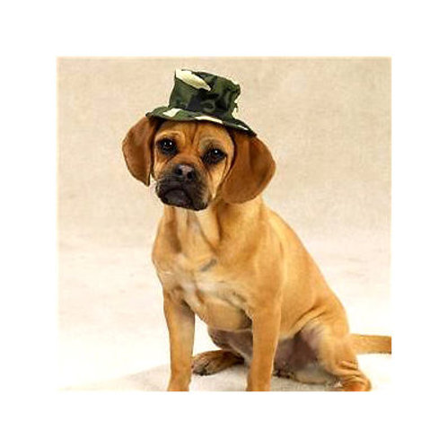 Zorba Designer Camouflaged Hat for Dogs