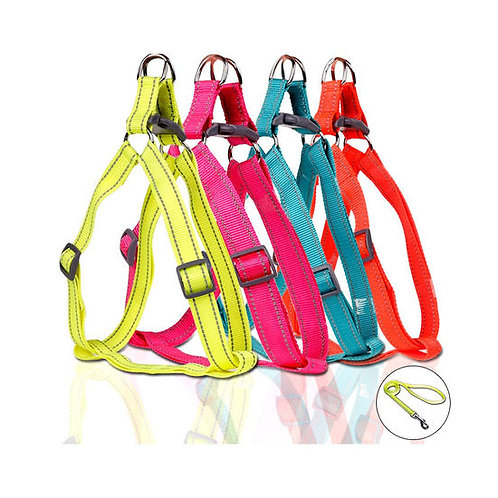 Puppy Love Neon Reflective Step-in Harness with Leash