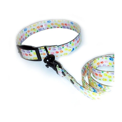 Puppy Love Printed TPU Collar and Leash Set for Small Breed Dogs