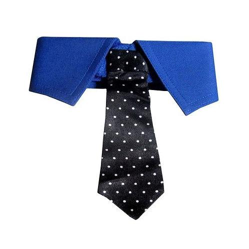Zorba Designer Fancy Tie Collar for Dogs