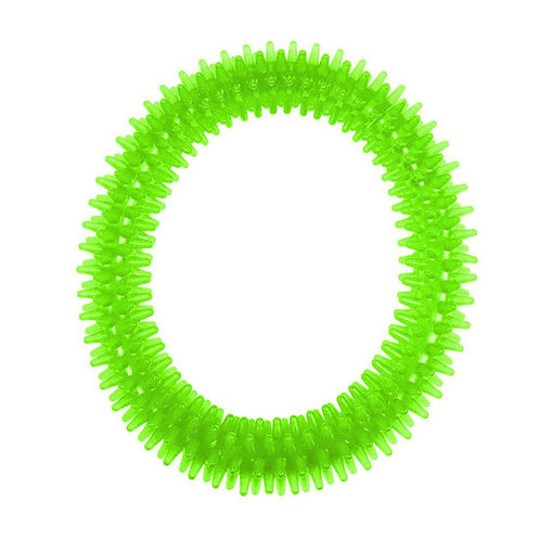 Nunbell Nylon Spiked Play Ring for Dogs and Cats