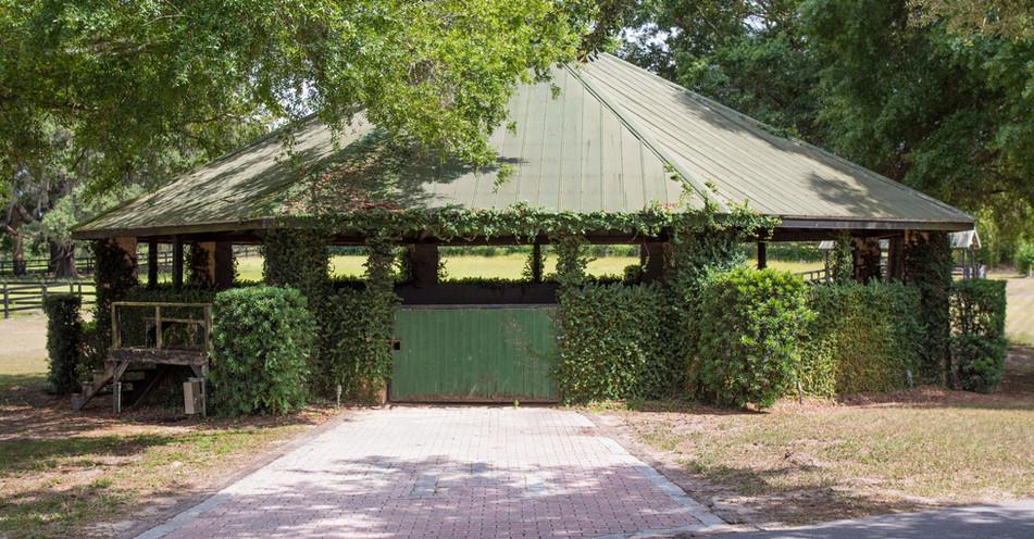 Paso Fino Farm