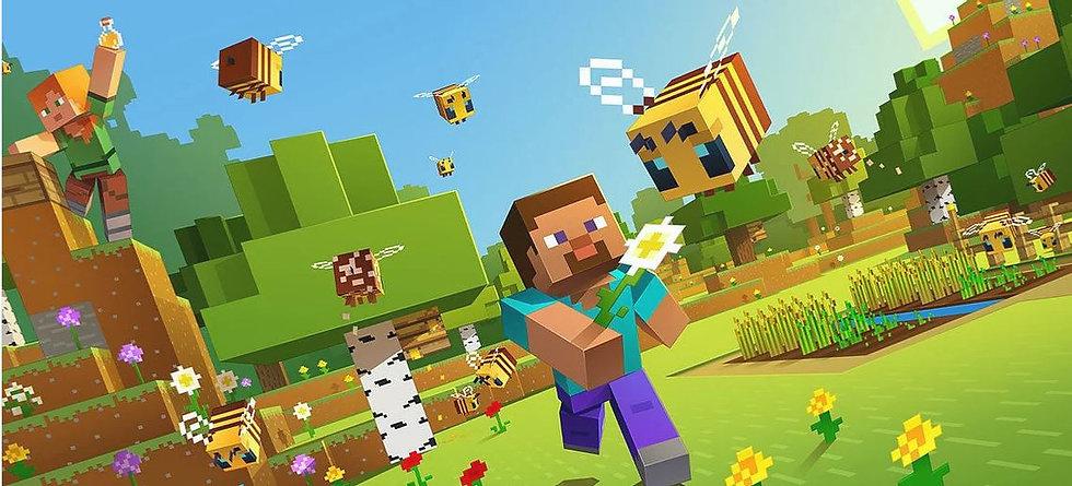Minecraft 1.JPG
