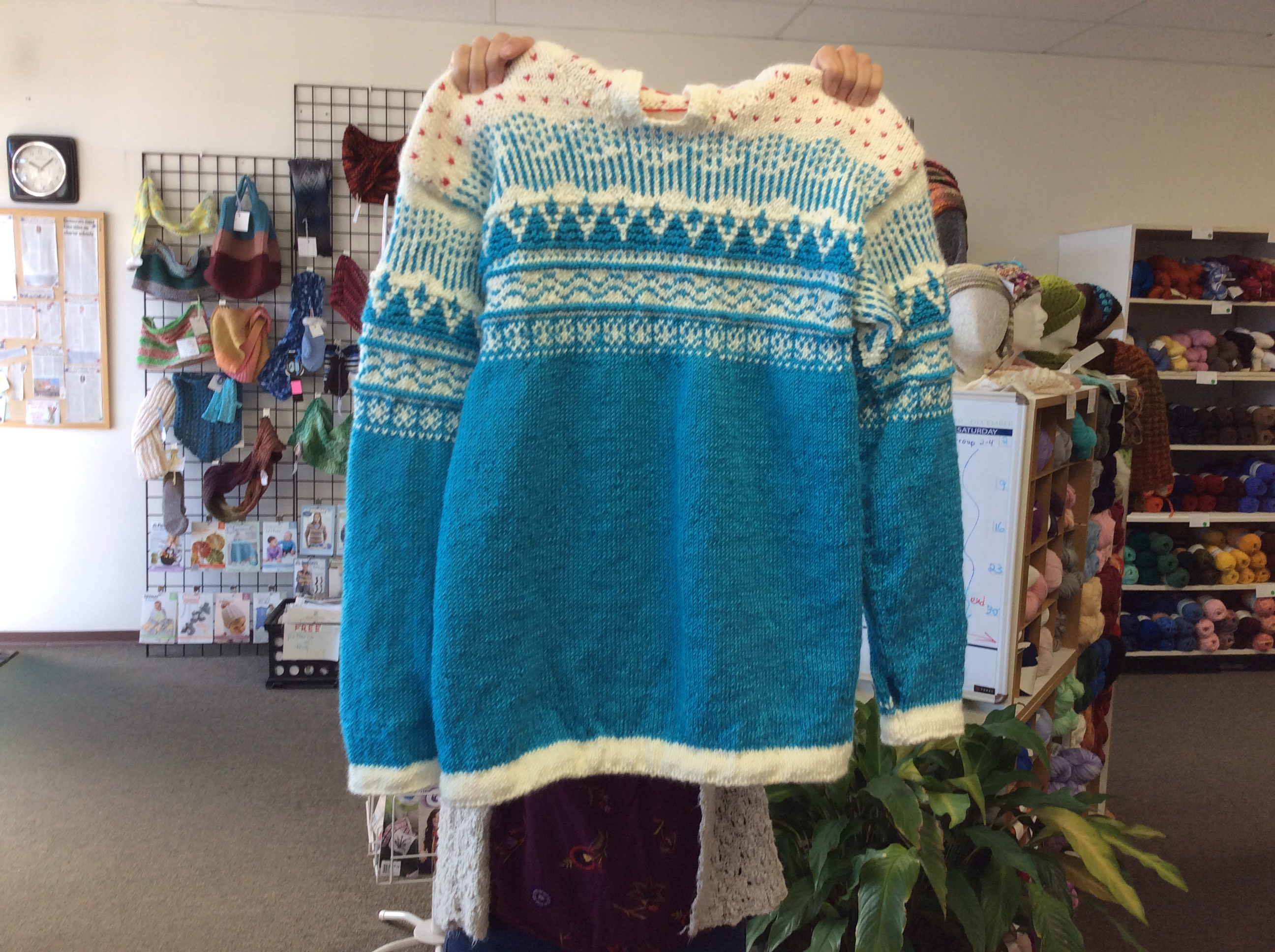 Celeste's Fair Isle Hooded Sweater - Fro
