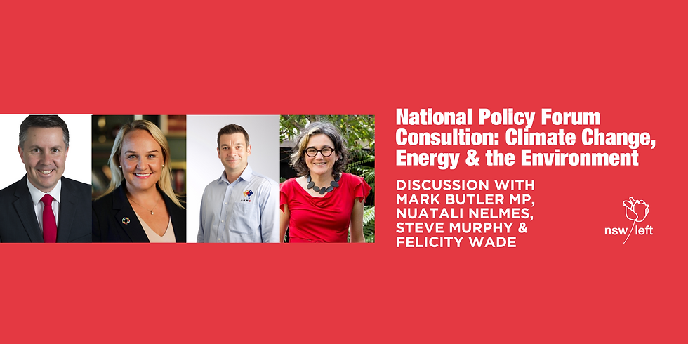 National Policy Forum Consultation: Climate Change, Energy & Environment