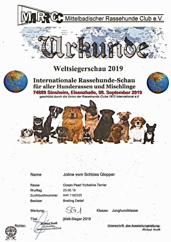 Urkunde Weltmeister Joline.jpg