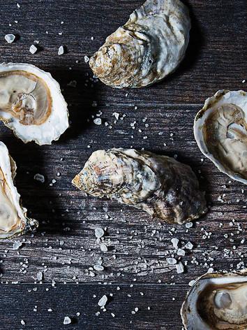 oysters_bg_fpo.jpg