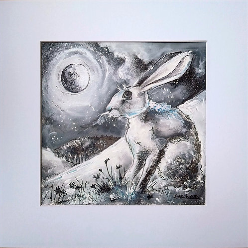 Hares - 'From the mystical hill, down to bluebell wood'.