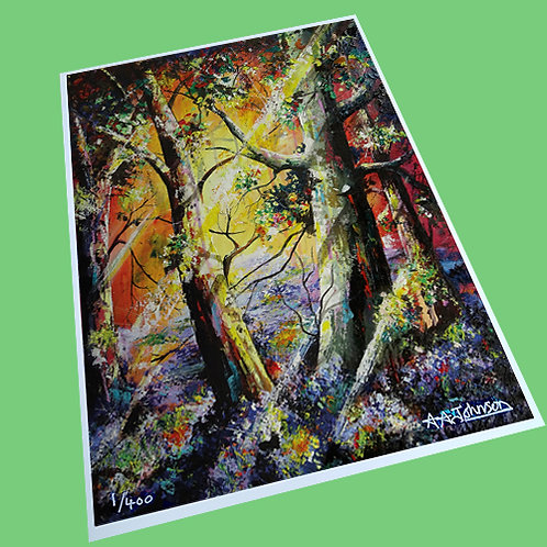 Limited Edition Prints Collection #1