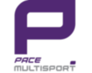 PACE-stacked-logo-transparent.png