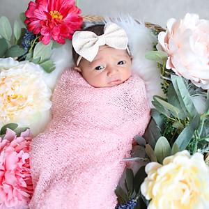 Navy Newborn Photos
