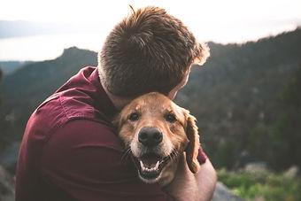 Person hugging Golden Retriever Dog