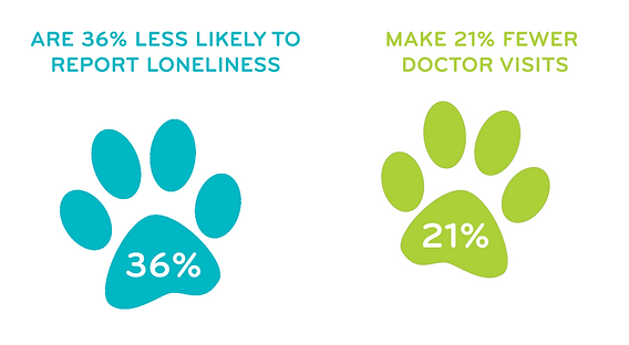 Depession statistics on senior citizens who own a pet
