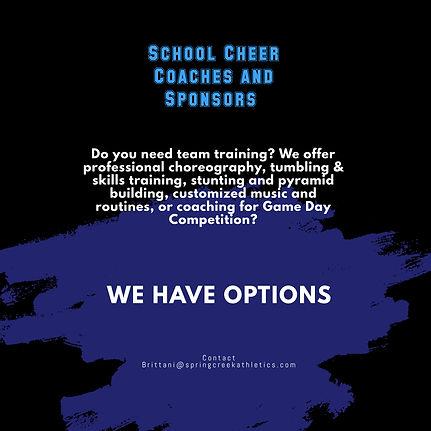 Copy of Cheerleader Tryouts Flyer Template (3).jpg