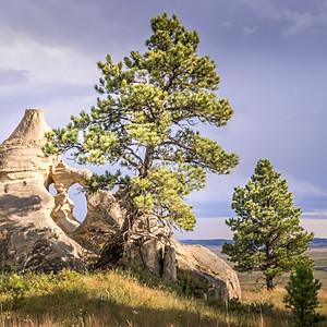 Medicine Rocks State Park